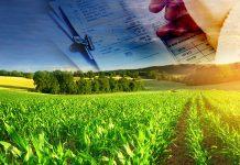 Prorogate le percentuali di compensazione IVA in agricoltura per tutto il 2017