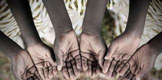 8, 5 e 2 per mille: indicazioni per contribuenti e CAF