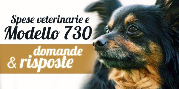 spese veterinarie 2015