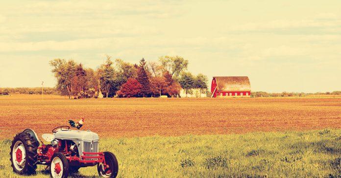 Detraibilità canoni di affitto per gli imprenditori agricoli
