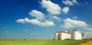 La disoccupazione agricola alla luce del decreto Cura Italia