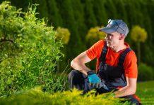 manutenzione delle aree verdi