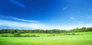 I comproprietari di terreni edificabili, non in possesso della qualità di IAP o di coltivatori diretti, non versano l'IMU in modo ordinario